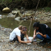 Trying to identify on of the creek critters