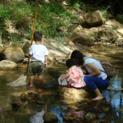 Looking for critters in the creek
