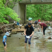 Families investigating the creek