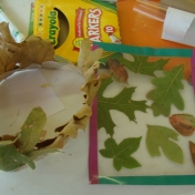 Examples of Nature Crafts
