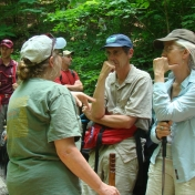 More Discussion on Old Growth Forests