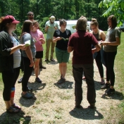 Using a Dichotomous Tree Guide to Identify Trees