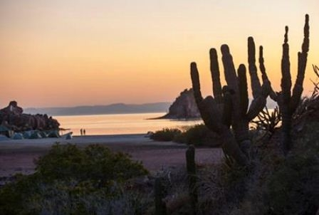 Beach in Baja, Mexico