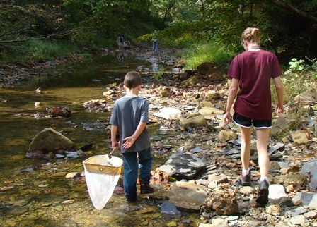 Creek Critter Hunt at Family Nature Day