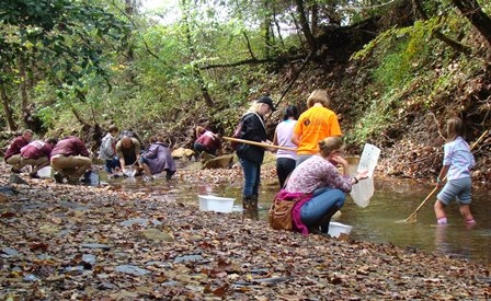 Creek Critter Hunt during Maywoods Family Nature Day