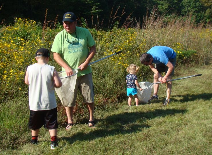 Looking for insects caught in nets at Family Nature Day activity