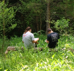 Field Research at Lilley Cornett Woods