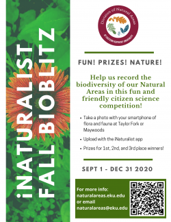 iNaturalist Bioblitz competition at Maywoods and Taylor Fork!